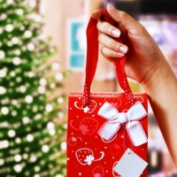 How To Save During The Holidays 2012